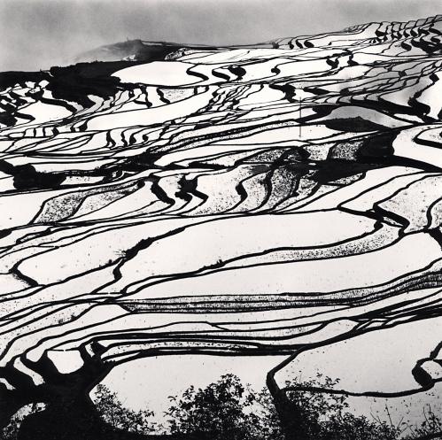 Michael Kenna, 'Yuanyang, Study 2, Yunnan, China', 2013, Weston Gallery