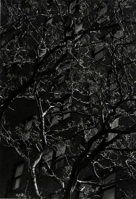 , 'Philadelphia,' 1996, Laurence Miller Gallery