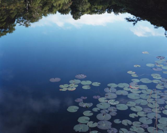 , '15, WM-283; from the series 'Water Mirror',' 2015, CHRISTOPHE GUYE GALERIE