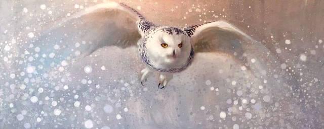 , 'Snow Hunter (Snowy Owl),' , Gerald Peters Gallery Santa Fe
