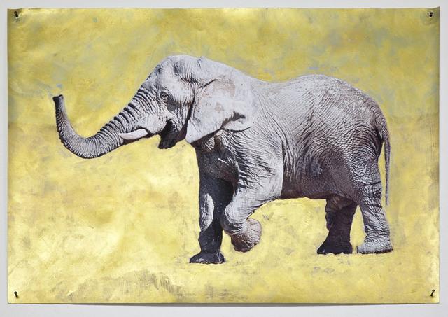 , 'White Elephant Poster,' 2015, Anita Beckers