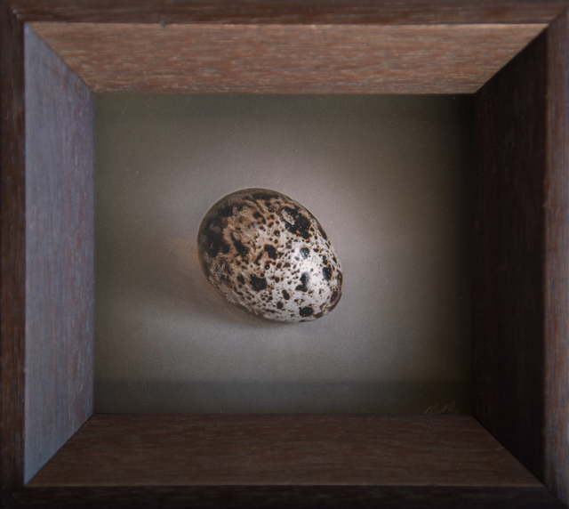 Kate Breakey, 'Quail Egg 38', 2019, Photography, Hand-colored archival pigment print, Etherton Gallery