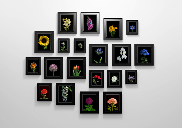 , 'Bloomed,' 2016, Priveekollektie Contemporary Art | Design
