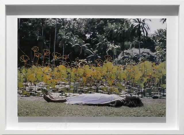 , 'Linetrap 15,' 2015, Carlos Carvalho- Arte Contemporanea