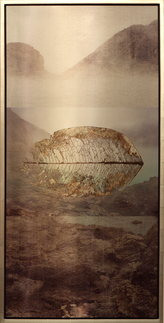 , 'Volcanic Leaf Suspended,' 2011, Brian Gross Fine Art