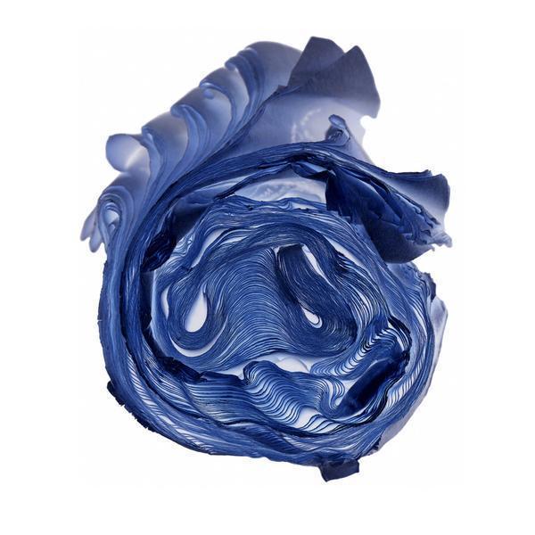 Cara Barer, 'Blue Rose', 2013, Bau-Xi Gallery