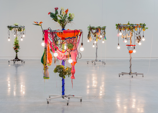 , 'Female Natives: No. 3 Saturation out of Season,' 2010, Seattle Art Museum