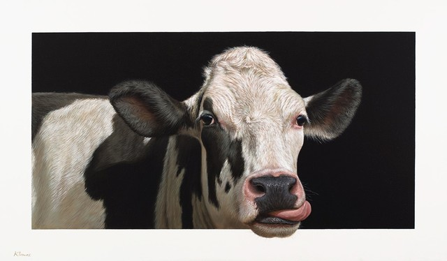 , 'Susan the Cow,' , Plus One Gallery