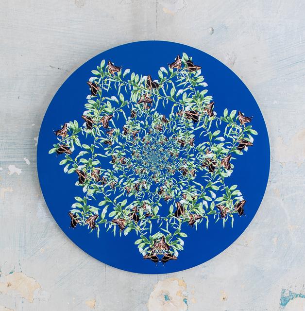 , 'Lucky Star Medallion,' 2016, Octavia Art Gallery