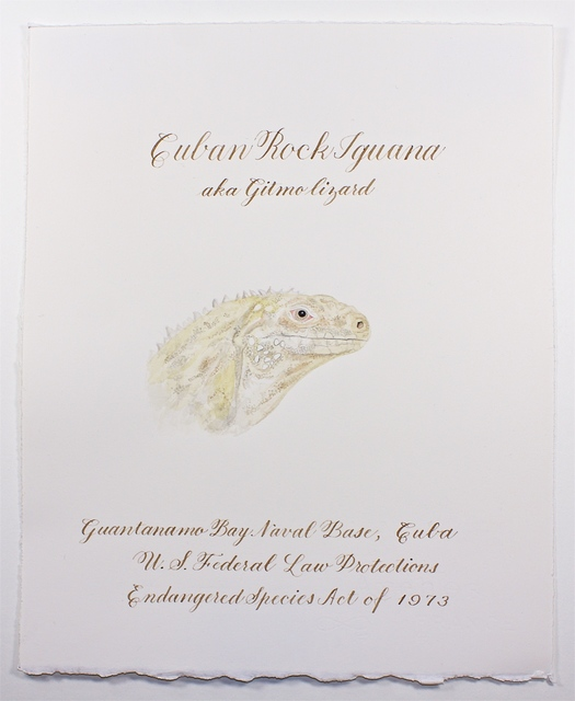 , 'Gitmo Lizard (from the War Garden Series),' 2018, Talley Dunn Gallery