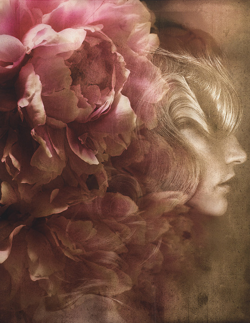 Giovanni Gastel, 'Flowers 02', 2011, Photography, Digital print on photographic paper, Finarte