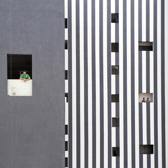 , 'Zebra façade,' 2014, Catherine Edelman Gallery