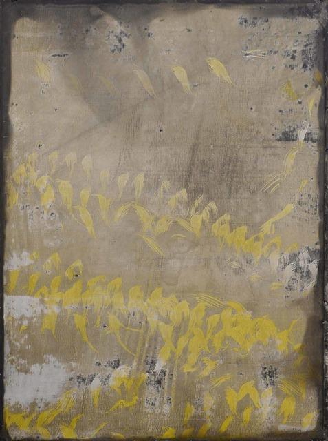 , 'Painting of birds,' 2015, Puerta Roja
