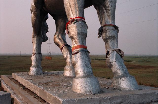 Gulnara Kasmalieva & Muratbek Djumaliev, 'Untitled (Horse)', 2005, Winkleman Gallery