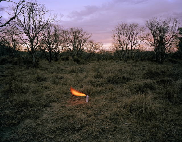 , 'An aerosol container in an abandoned peach orchard,' 2012, ClampArt