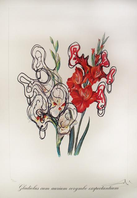 Salvador Dalí, 'Gladiolus Cum Aurium Corymbo Expentantium (Pirate's Gladioli)', 1972, DTR Modern Galleries