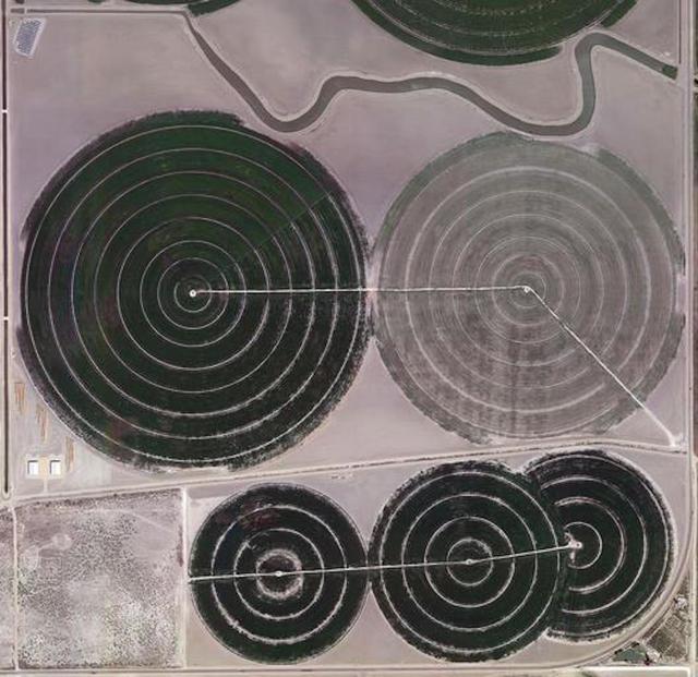 Lili Almog, 'Water Field #7B ', 2014, ESKFF