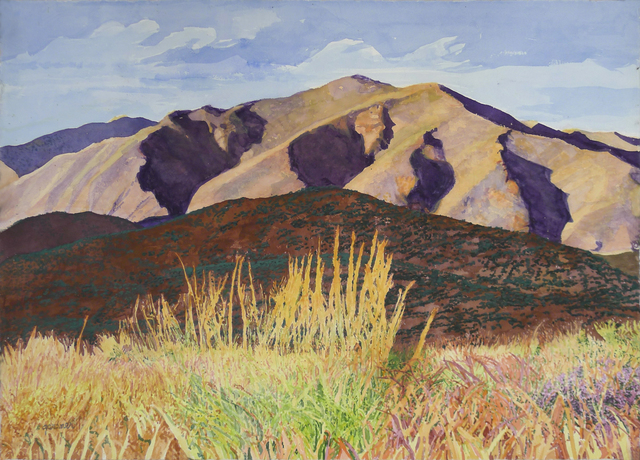Sheila Gardner, 'Late Day Shadows on the Pioneer Foothills', Gail Severn Gallery