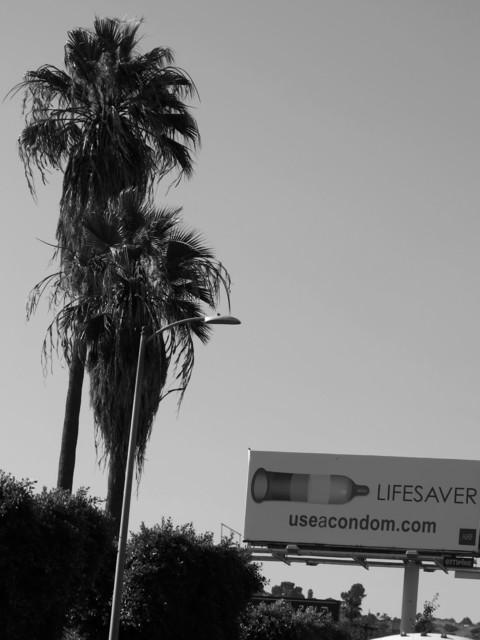 , 'Livesaver,' 2014, COSAR HMT