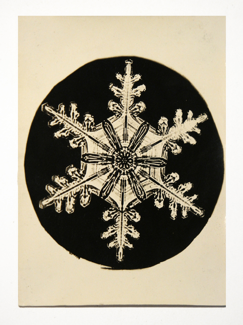 , 'Snowflake,' 1888-1927, Richard Levy Gallery