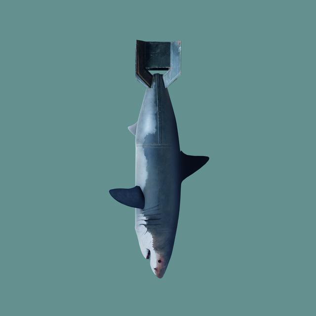, 'Shark Bomb,' 2017, Licenciado