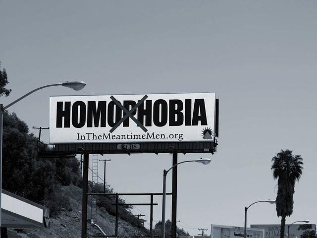 , 'Homophobia,' 2014, COSAR HMT