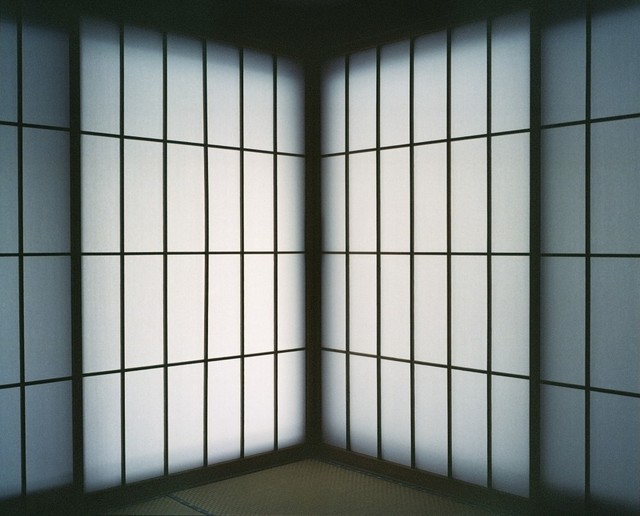 , 'Seiichi Shiraii curtain from series European Eyes on Japan / Japan Today. vol.13 / MA / 間,' 2011, Temnikova & Kasela