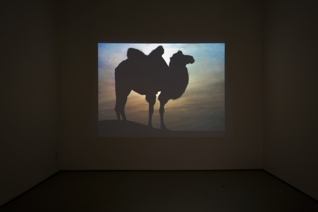 , 'Desert and Camel,' 2018, Roberts Projects