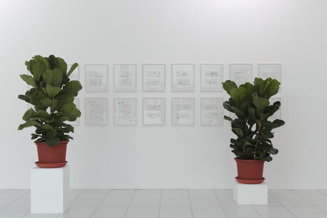 , 'Porcupine score,' 2016, Museum Dhondt-Dhaenens