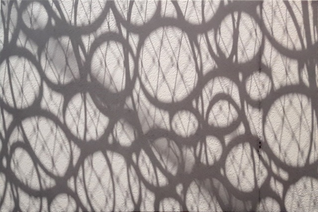 , 'Cell Tissue,' , Inn Gallery