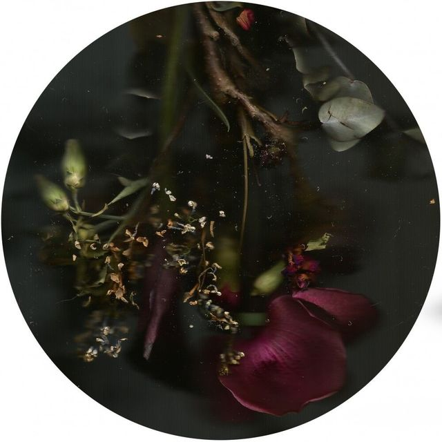 , 'Bouquet,' 2016, Luisa Catucci Gallery