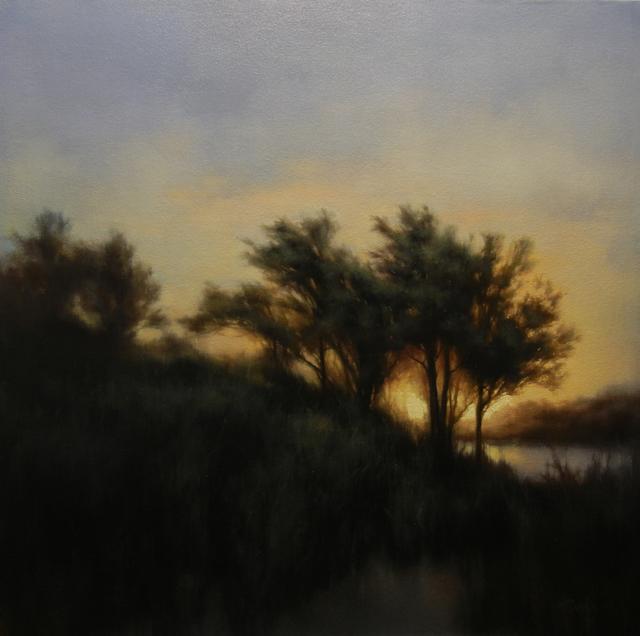 , 'Illuminated Marsh,' 2015, Bowersock Gallery