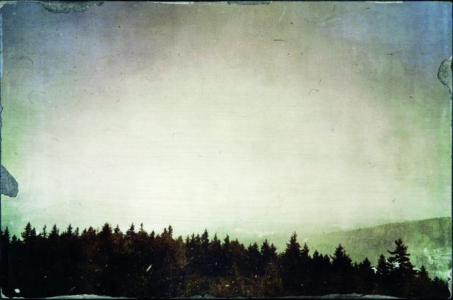 , 'Same View,' , Dowling Walsh