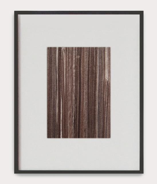 , 'The Grain of Woods ,' , Anima-Mundi