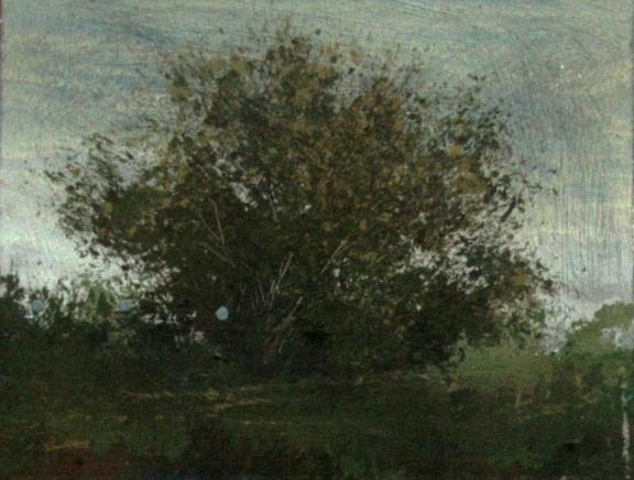 , 'Tanglewood,' , Diehl Gallery
