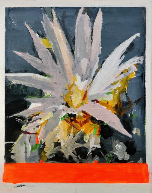, 'CACTUS FLOWER #3,' 2018, saltfineart