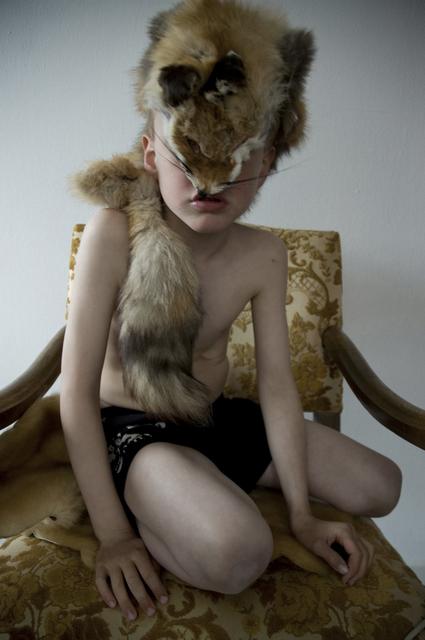 , 'Fox,' 2008, V1 Gallery