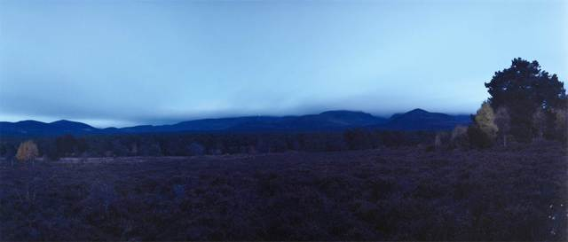, 'Re-visiting Rothiemurchus fen view. Plate n°1241, Aviemore, Rothiemurchus, October 2013. 57°9.527'N 3°47.467'W,' 2016, The Photographers' Gallery