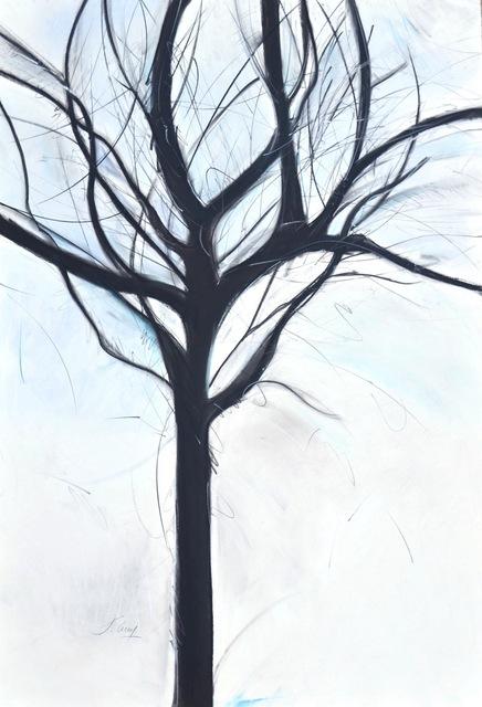 , 'Winter Trees, No.1, Series 2,' 2017, 440 Gallery