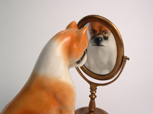 , 'Dog/Mirror,' 2006, Hosfelt Gallery