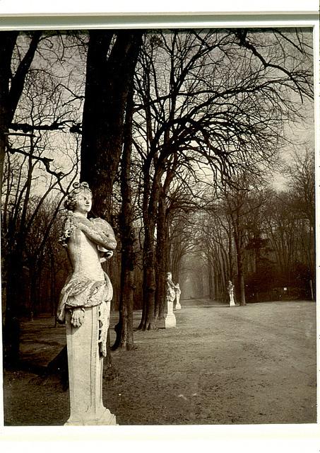Jean-Eugene-Auguste Atget, 'Versailles', ca. 1922, Clark Art Institute