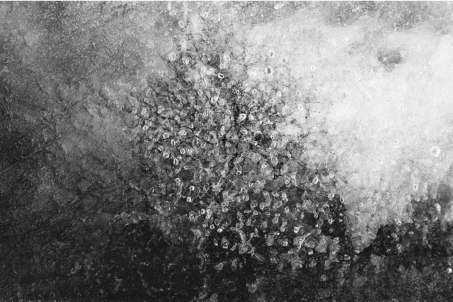 , 'PN # 503-609,' 2015, Photo12 Galerie