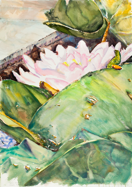 , 'Lily Pond VI,' 2015, Bruno David Gallery & Bruno David Projects