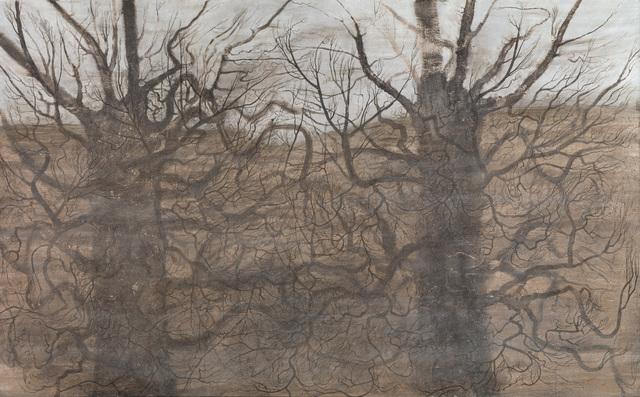 Elina Merenmies, 'Language of Trees', 2008, Kiasma Museum of Contemporary Art