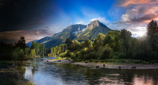 Stephen Wilkes, 'Grizzly Bears, Bella Coola, British Columbia, Canada, Day to Night', 2018, Robert Klein Gallery