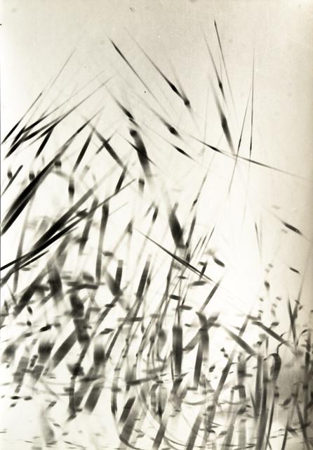 , 'Comme des roseaux,' 1965, Galerie Maria Wettergren