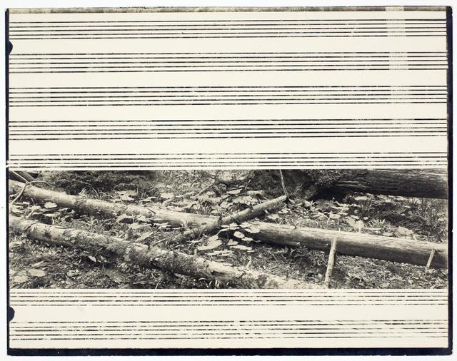 , 'Lied (3),' 2013, Galerie Krinzinger