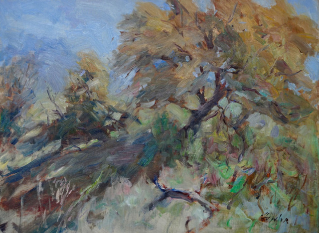, 'Spring oak ,' 2017, Wally Workman Gallery