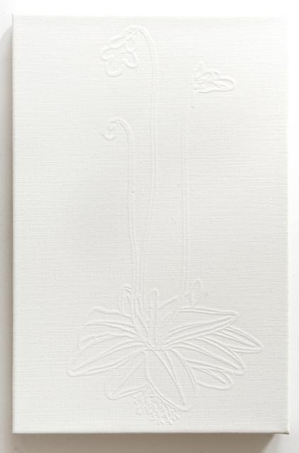 , 'Butterwort,' 2015, Galerie Sabine Knust