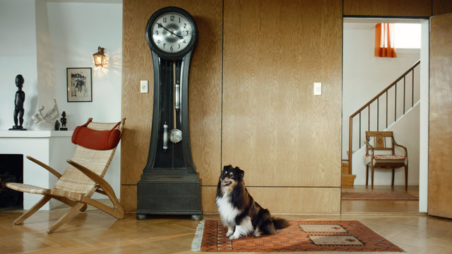 , 'Scenes from Western Culture, Dog and Clock,' 2015, Luhring Augustine